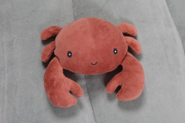 Little Dutch játszószőnyeg - tengeri állatok (menta)